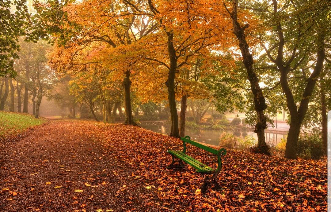 Huele a otoño